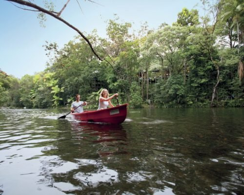daintree-rainforest-kayak-1